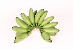 Green egg-banana  (Pisang mas) isolated on white background. Egg-banana  or Pisang mas is  famous fruit of North Thailand Royalty Free Stock Photography
