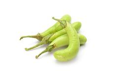 Green eggplant isolated on white background Royalty Free Stock Image