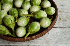 Green eggplants Royalty Free Stock Photos