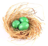 Green eggs Stock Photography