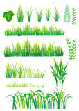 Green  elements for design Stock Images