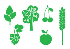 Green vector elements of nature - set Royalty Free Stock Photo