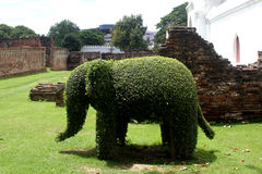 Green elephant Stock Photography