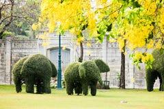 Green Elephants Stock Photos