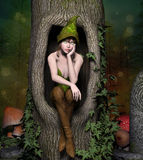 Green elf. Beautiful elf sits in a trunk Stock Image