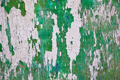 Green embossed wall with bulging paint. Texture. Royalty Free Stock Photography