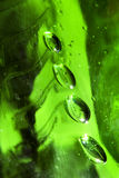 Green emerald bubbles or drops water Royalty Free Stock Image