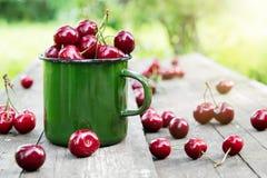 Green enameled mug full of ripe cherries on wooden bench in summer garden. Green enameled mug full of red ripe cherries on wooden bench in summer garden Royalty Free Stock Photo
