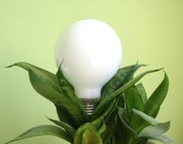 Green energy. This photo symbolizing the green energy royalty free stock photos