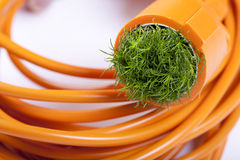 Green energy. Cable and green energy, sustainable Stock Photos