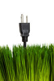 Green energy. Green grass and Electric Plug, concept of Green energy Stock Photo
