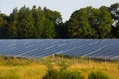 Green energy. Solar pannels in a forest Stock Photography