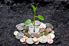 Green energy. ATree growing on a socket with coins / green energy / save the world royalty free illustration