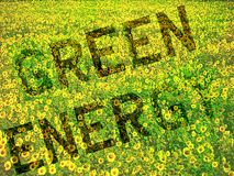 Green Energy Concept. A field of sunflowers with the letters Green Energy embedded Stock Photos