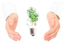 Green energy concept. Royalty Free Stock Image