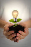 Green energy concept : Bulb of plant. On women hand Stock Photos