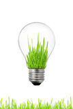 Green Energy Concept: Light Bulb With Grass Inside Royalty Free Stock Photos