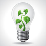 Green energy concept - Power saving light bulbs Royalty Free Stock Photo