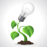 Green energy concept - Power saving light bulbs Royalty Free Stock Photography
