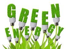 Green energy concepts. On white background Royalty Free Stock Photo