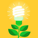 Green energy efficient CFL light bulb. Ecological power saving metaphor. Flat style vector illustration Royalty Free Stock Image