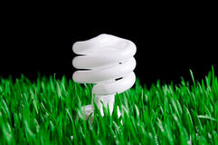 Green Energy - Environmental Concept Royalty Free Stock Photos