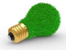 Green energy. Green grass on lightbulb surface Stock Photography