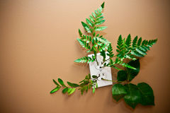 Green Energy - Green Power Outlet Stock Images