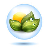 Green energy icon. Vector green energy icon with green leaves and sun inside a water drop vector Royalty Free Stock Photography