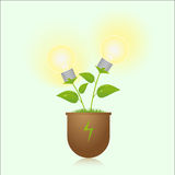 Green energy lamps on the plant Stock Images