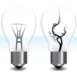 Green Energy Light Bulb Royalty Free Stock Photo