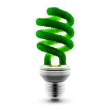 Green energy-saving lamp Stock Photos