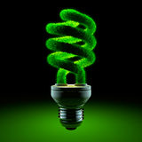 Green energy-saving lamp Stock Photo
