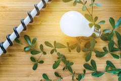 Green Energy saving light bulb with flare and electric wire, green leaves on wooden background as ecology concept.  royalty free stock image