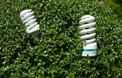 Green Energy and Saving Light Bulb. Two energy saving green light bulb surrounded by green leaves Stock Photo