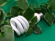 Green Energy Saving Lightbulb Royalty Free Stock Photos