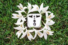 Green energy. A socket with white flower on grass / green energy / save the world royalty free illustration