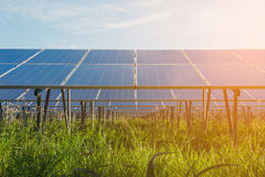 Green energy with solar panels in renewable power plant. Solar panel at solar power plant to innovation of green energy for life stock image