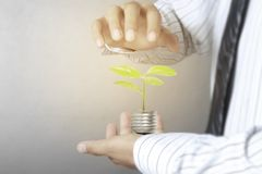 Green energy symbols ecology light bulb. Green energy symbols ecolog a light bulb Royalty Free Stock Photo