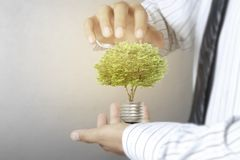 Green energy symbols ecology light bulb. Green energy symbols ecolog a light bulb Royalty Free Stock Photography