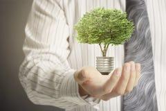 Green energy symbols ecology light bulb Stock Image