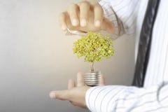 Green energy symbols ecology, light bulb in hand. Green energy symbols ecology, light bulb in a hand Stock Photos