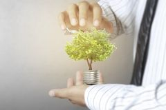 Green energy symbols ecology, light bulb in hand. Green energy symbols ecology, light bulb in a hand Royalty Free Stock Images