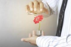 Green energy symbols ecology, light bulb in hand. Green energy symbols ecology, light bulb in a hand Royalty Free Stock Image