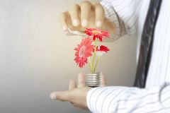 Green energy symbols ecology, light bulb in hand. Green energy symbols ecology, light bulb in a hand Royalty Free Stock Photos