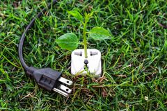 Green energy. A Tree growing on a socket with a plug / green energy / save the world royalty free illustration