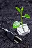 Green energy. Tree growing on a socket with a plug / green energy / save the world stock illustration