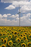 Green energy - wind turbine Stock Photo