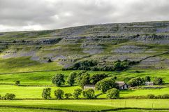 Green English countryside, Yorkshire Dales, Ingleton Royalty Free Stock Photography