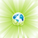 Green Environment Earth Royalty Free Stock Photo